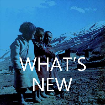 blok-lwhats-new