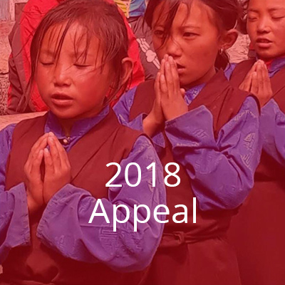 2018-appeal2