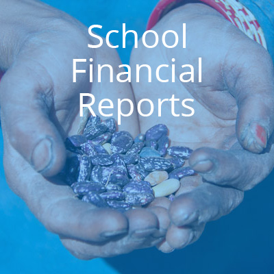 financial-reports