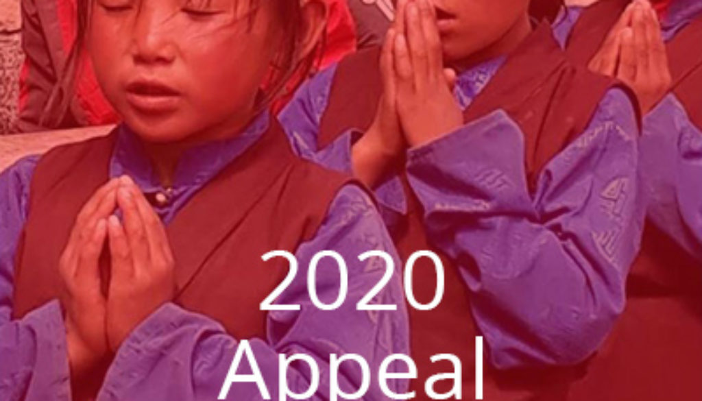 2020-appeal-48